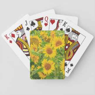 Large field of sunflowers near Moses Lake, WA 2 Playing Cards