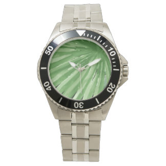 Large Green Fern Palm and Monstera Tropical Plants Watch