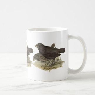 Large Ground Finch Coffee Mug