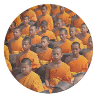 Large Group of Meditating Monks Plate