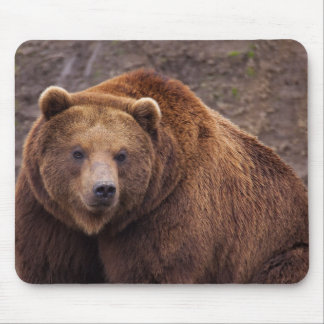 Large Kodiak Bear Mouse Pad