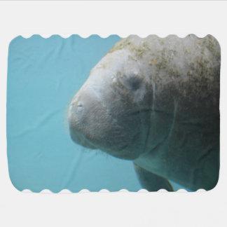 Large Manatee Underwater Swaddle Blankets
