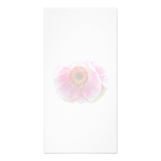 Large Pink Poppy Picture Card