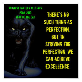 Large Poster - No such thing as perfection