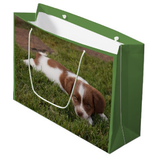 Large Puppy Gift Bag