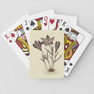 Large Purple Spring Crocus Botanical Illustration Playing Cards
