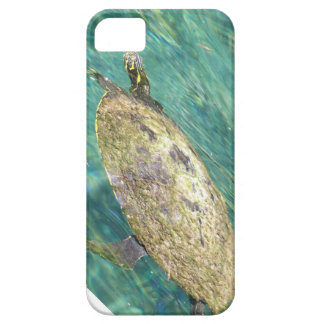 large river turtle swimming case for the iPhone 5