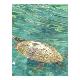 large river turtle swimming letterhead