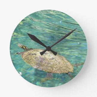 large river turtle swimming round clock