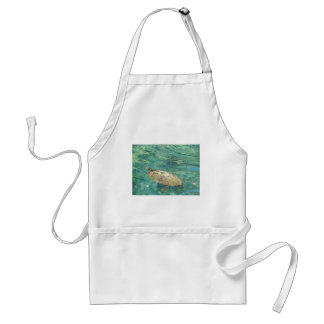 large river turtle swimming standard apron