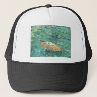 large river turtle swimming trucker hat