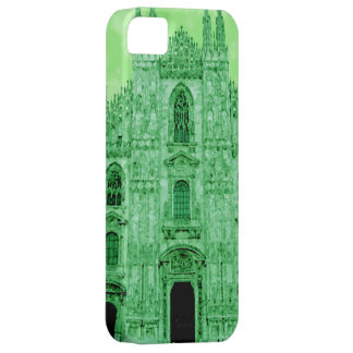 Large saintly hall iPhone 5 covers