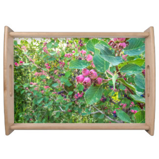 Large Saskatoons Serving Tray