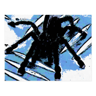 Large spider on metal surface postcard