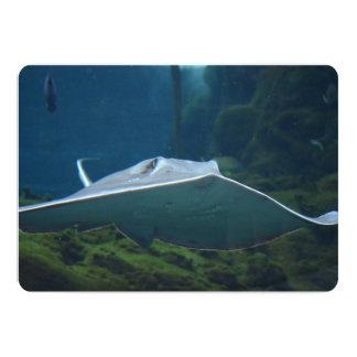 Large Stingray Card