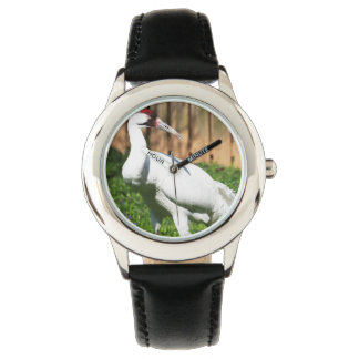 Large Whooping Crane Watch