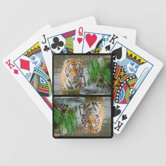 Large Wild Tiger Enjoying the Water Bicycle Playing Cards