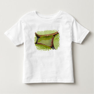 Largest lily, the Giant Amazon Water Lily Toddler T-shirt