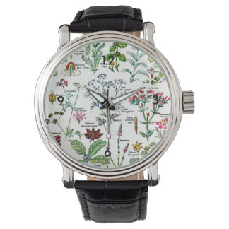 Larousse Digestive Plants Painting Watch