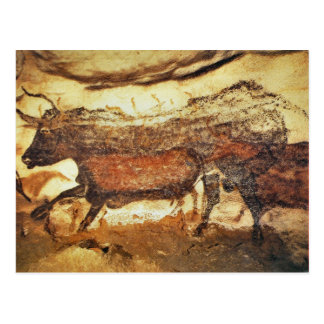 Lascaux Prehistoric cave paintings Postcard