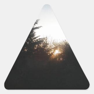 Last bit of energy triangle sticker