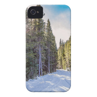 Last Chance iPhone 4 Case-Mate Cases