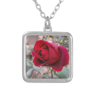 last red rose silver plated necklace