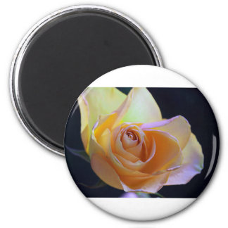 Last Second Chance 2 Inch Round Magnet