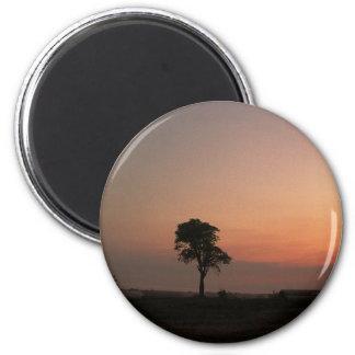 last tree 2 inch round magnet