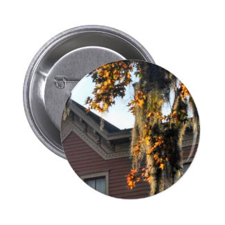 late afternoon light on leaves in Savannah, GA, US Pinback Button