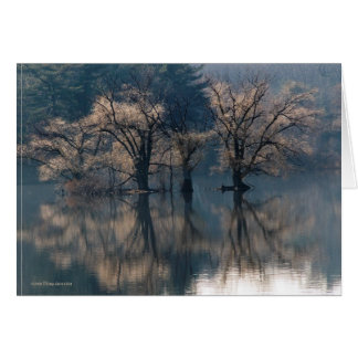 Late Autumn Island Reflections Card