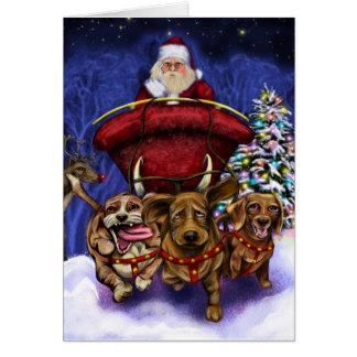 Late Christmas Card