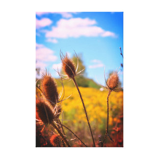 Late summer blue sky canvas print