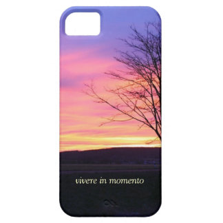 Latin Quote LIve in the Moment iPhone 5 Cases