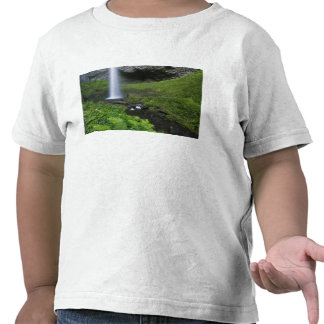 Latourell Falls, Columbia River Gorge, Oregon, Shirt