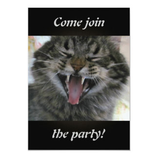 """Laughing Cat 5"""" X 7"""" Invitation Card"""