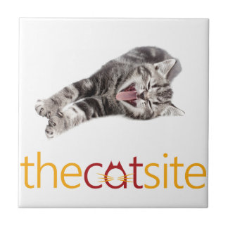Laughing Cat Tile