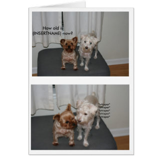 Laughing Dog Birthday Card