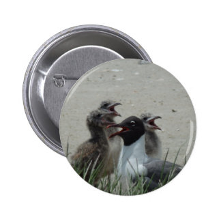 Laughing Gull 2 Inch Round Button