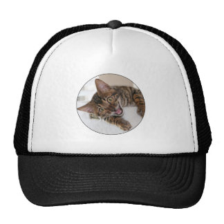 LAUGHING KITTEN TRUCKER HAT