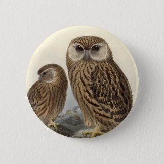 Laughing Owl Vintage Illustration 2 Inch Round Button