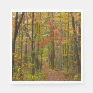 Laurel Hill Trail in Fall Paper Napkins