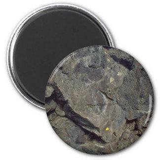 Lava shards magnet