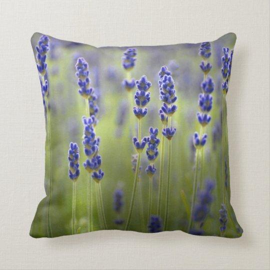 Lavander Fields Flowers Nature Throw Pillow