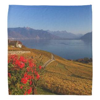 Lavaux region, Vaud, Switzerland Bandana