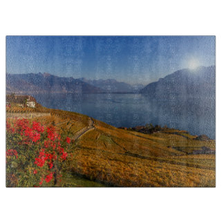 Lavaux region, Vaud, Switzerland Boards