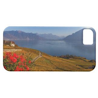 Lavaux region, Vaud, Switzerland Case For The iPhone 5