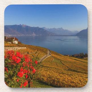 Lavaux region, Vaud, Switzerland Coaster