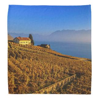Lavaux region, Vaud, Switzerland Kerchiefs