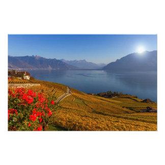 Lavaux region, Vaud, Switzerland Stationery
